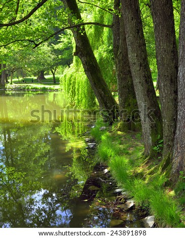 Recreation area in the park near the lake - stock photo