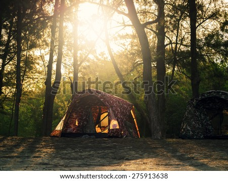 recreational camping tents on sunset background and alpine trees on natural forrest - stock photo