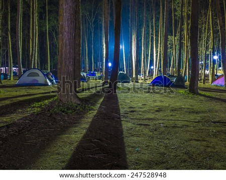 recreational camping tents with silhouetted of the alpine trees on natural forrest after dark night - stock photo