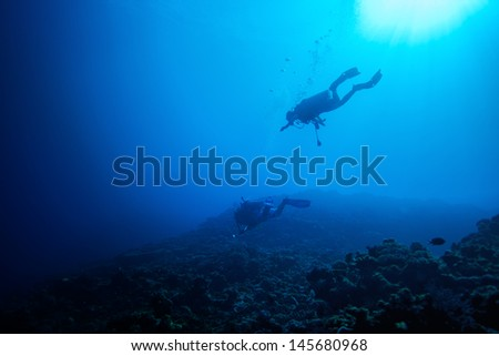 Recreational diver in fiji - stock photo