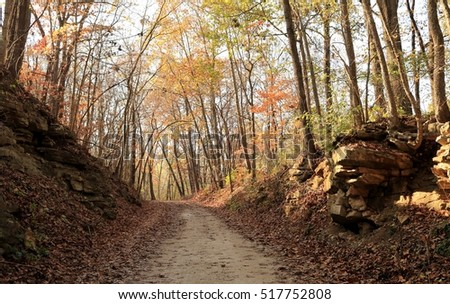 Recreational trail in the woods in the fall; Missouri, Midwest