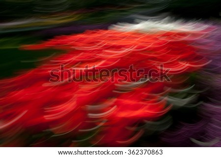 Red abstract flowers background