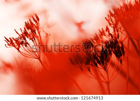red abstract natural background of grass and red flowers in full bloom taking all the space image