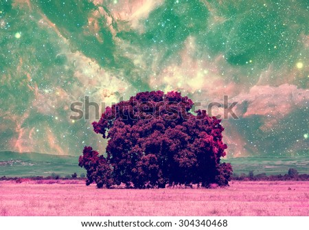 red alien landscape with alone tree over the night sky with many stars - elements of this image are furnished by NASA - stock photo