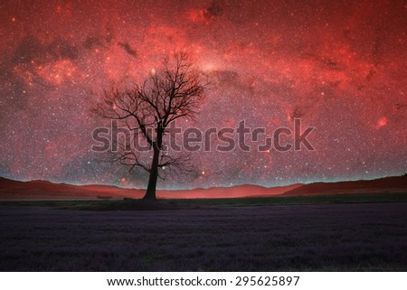 red alien landscape with alone tree silhouette in purple field- elements of this image are furnished by NASA