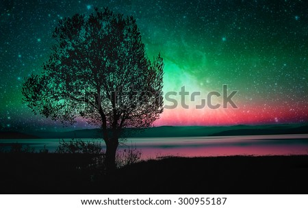 red alien landscape with alone tree silhouette near lake- elements of this image are furnished by NASA