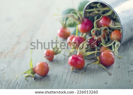 Red and orange autumn rosehips in a vintage old metal cup with green background - stock photo