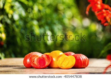 Red and orange tomatoes on the table on a green background - stock photo