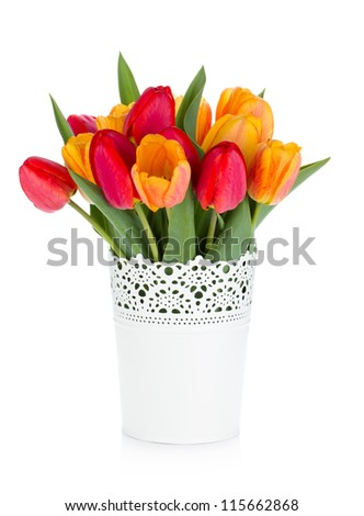 Red and orange tulips in flowerpot. Isolated on white background - stock photo