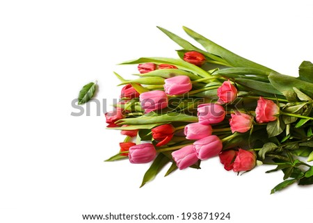 Red and pink bouquet of fresh spring tulip and roses flowers