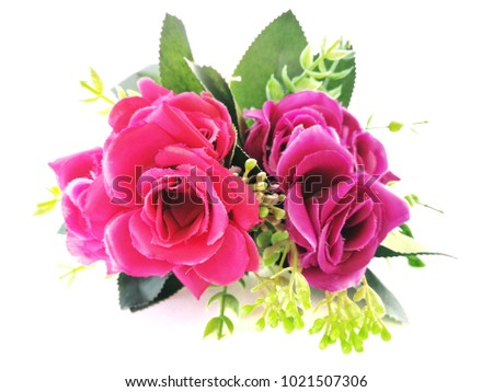 Red And Purple Roses White Background