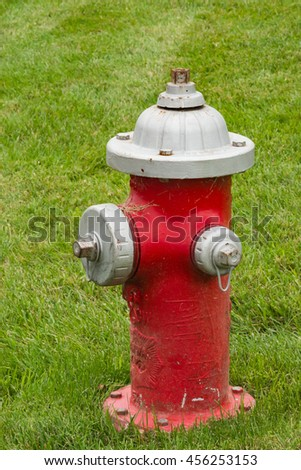 Red and silver fire hydrant in the green grass of summer.