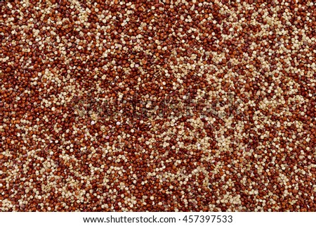 red and white chia plant seeds texture pattern
