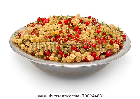 Red and white currant in the  big metal plate, isolated on white background.