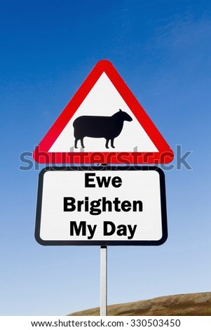 Red and white triangular road sign with a Ewe Brighten My Day play on words concept against a partly cloudy sky background