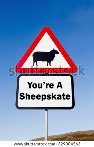 Red and white triangular road sign with a You're A Sheepskate play on words concept against a partly cloudy sky background