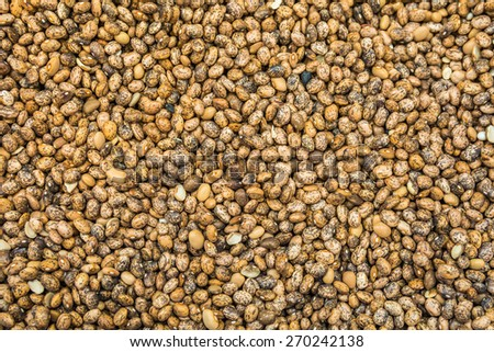 Red and yellow beans texture background - stock photo