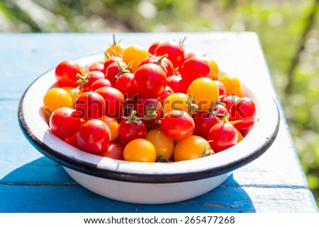 red and yellow cherry tomatoes in metal dish, outdoor rural scene - stock photo