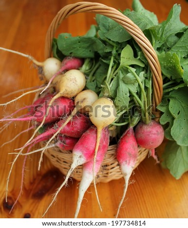 Red and yellow radishes in basket