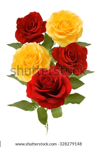 Red and yellow roses bunch isolated on white background - stock photo