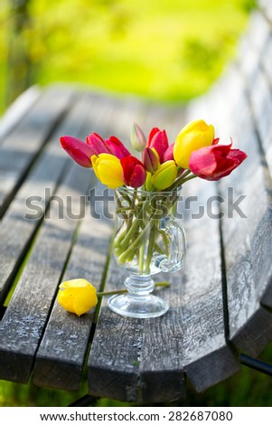 red and yellow tulips on bench - stock photo