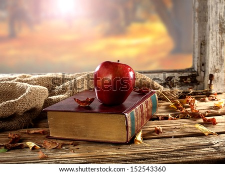 red apple and book  - stock photo