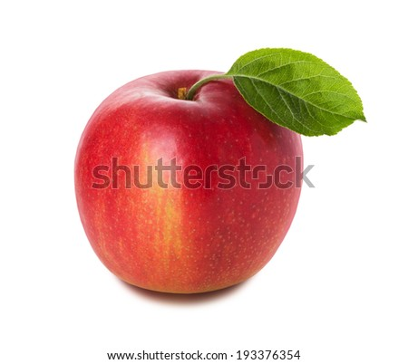 red apple on the white background