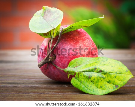 Red apple on wooden table in autumn garden against brick wall - stock photo