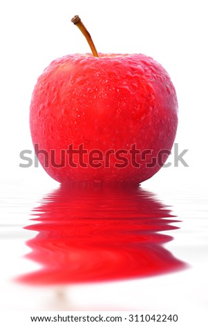 Red apple , there is the water drop , white background and the shade refect - stock photo