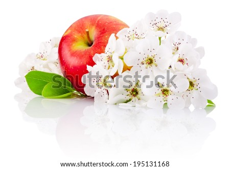 Red apple with leaf and flowers isolated on a white background - stock photo