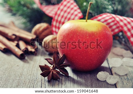 Red apple with spices and fir tree branch