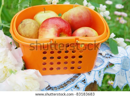 Red apples in the orange basket on the bench in garden