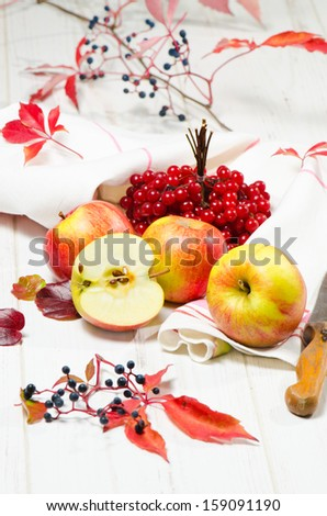 Red apples with cranberry - stock photo