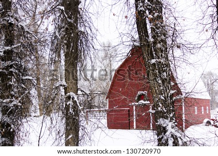 Red barn in snow on the farm in Colorado. - stock photo