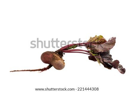 red beet with leaves on a white background - stock photo