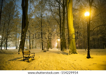 Red bench in the park covered with snow at night - stock photo