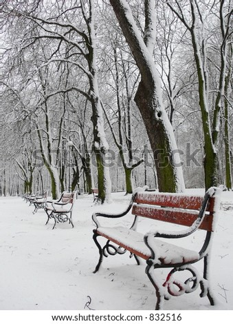 Red benches in snow