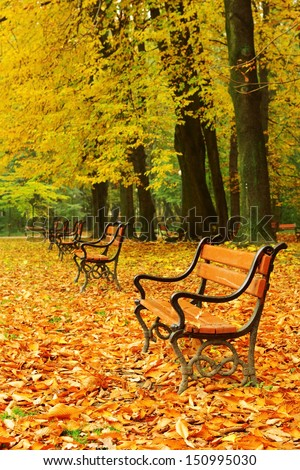 Red benches in the park in fall - stock photo