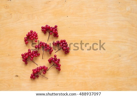 Red berries of viburnum on wood