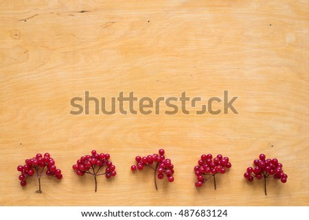 Red berries of viburnum on wooden background