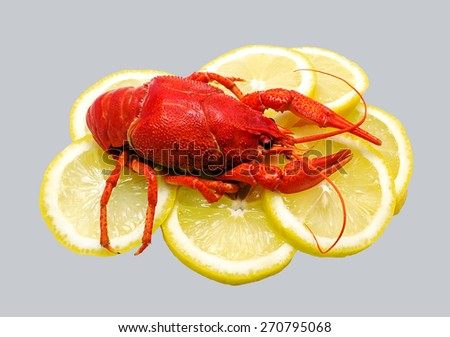 red big cancer on the background of lemon - stock photo