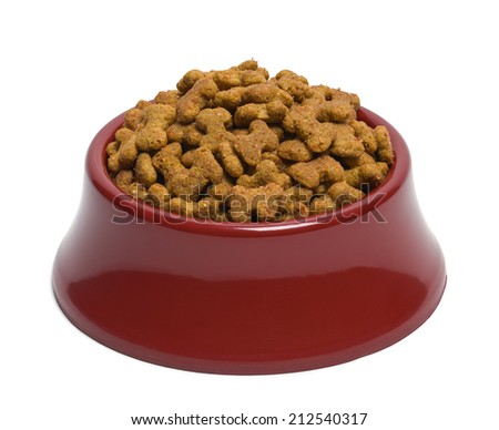 Red Bowl of Dog Food Isolated on White Background.
