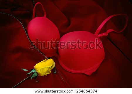 Red bra with artificial yellow rose. - stock photo