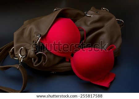 Red bra with women's leather bag. - stock photo