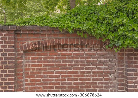Red brick wall and green leaves