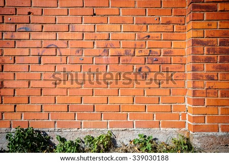Red brick wall background with green grass   - stock photo