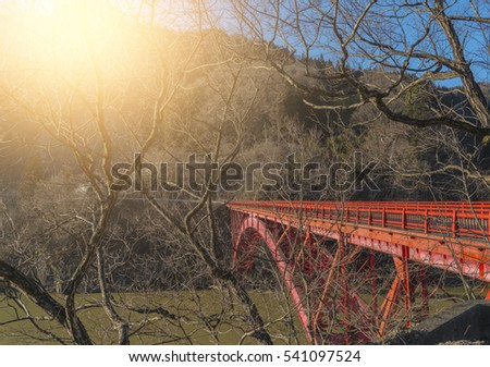 Red bridge in japan behind dry wood