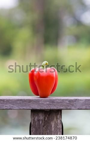 Red Bulgarian bell pepper - stock photo