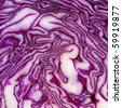 red cabbage slice close up - stock photo