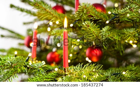 red candle in christmas tree over bright background - stock photo